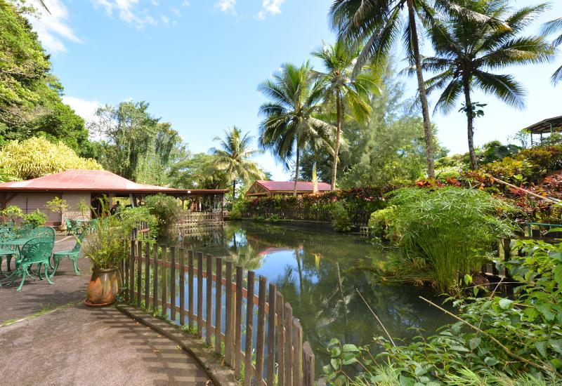 Jardins de valombreuse petit bourg guadeloupe tourisme for Restaurant jardin botanique