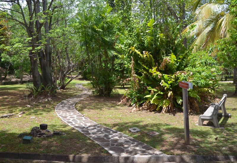 Jardin botanique basse terre guadeloupe tourisme for Jardin botanique guadeloupe