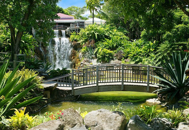 Jardin Botanique Deshaies Guadeloupe Tourisme